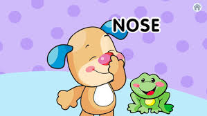 laugh learn where s puppy s nose for baby on the app store