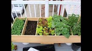 indoor apartment herb garden garden design ideas