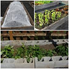 vegetable garden design for easy care or the lazy gardener u0027s way