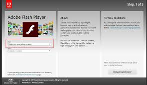 Flash Player Flash Player For Support