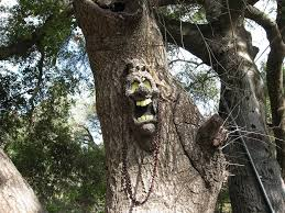 spooky tree lessons tes teach