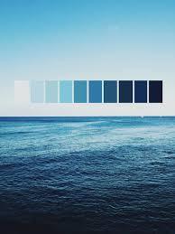 Blue Color Palette by Color Palette Blau Via Zerohq 69808983093 Colorrific