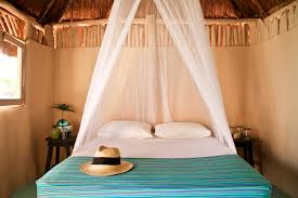 rent jungle cabana in tulum luxury camping in tulum