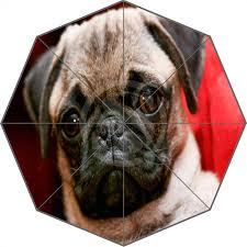 boxer dog umbrella w530l27 sale fashion custom cute pug dog animal umbrella sunny