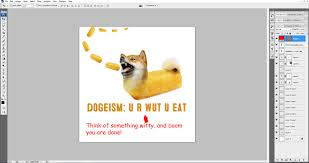 how to make a doge twinkie of your shiba inu my first shiba inu
