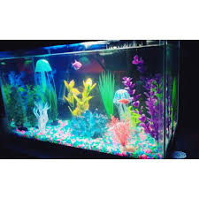 Home Aquarium Decorations Best 25 Fish Tank Decor Ideas On Pinterest Fish Tank Fish