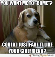 Dog Girlfriend Meme - could i just fake it like your girlfriend funny pet meme