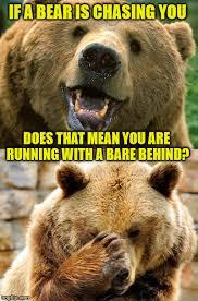 Running Bear Meme - bad pun bear imgflip
