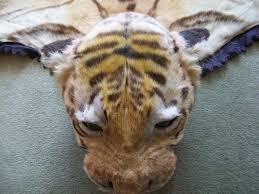 restoration creature features org uk