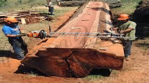 dangerous large wood milling works world amazing modern