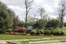 Botanical Gardens New Orleans by Tall Timbers New Orleans La Westbank Living