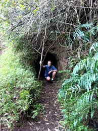 happy but not unscathed the waimano tunnels and ridge trail a