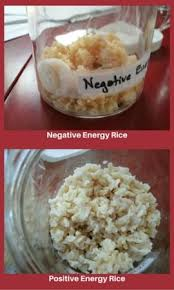 negative energy experiment the rice experiment citizen science and giving away your power