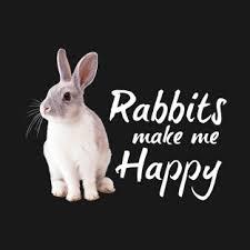 rabbit merchandise vw rabbit gifts and merchandise teepublic