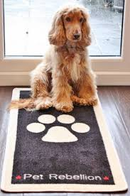 Wipe Your Paws Footprint Doormat Dog Floor Rug And Floor Mat To Stop Those Muddy Paws Machine