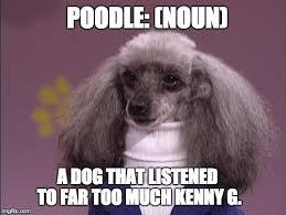 Turtleneck Meme - turtleneck poodle imgflip