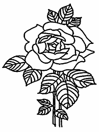 coloring pages of roses and flowers valentine flowers coloring pages realistic coloring pages