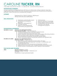 sample resume nursing graduate essay on the library