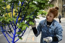 what s with all the blue trees project takes