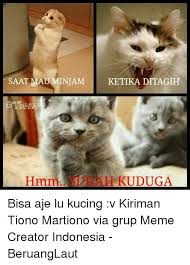 Meme Kucing - 25 best memes about indonesian language indonesian language