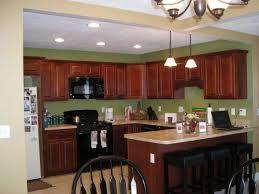 Dark Green Kitchen Cabinets 69 Best Kitchen Cabinets Images On Pinterest Kitchen Ideas Home