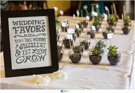 hawaiian themed wedding favors hawaiian wedding favors succulent diy wedding 11007