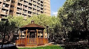 bella vista complex apartments for rent in new haven ct apartment