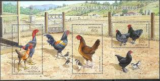 chicken breeds in australia with 4 benefits of a mixed flock