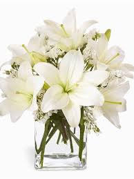 White Lily Flower Become Your Own Florist Create Luscious Flower Arrangements At