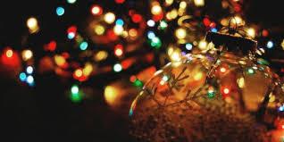 Garvan Gardens Christmas Lights Christmas Lights Best Business Template