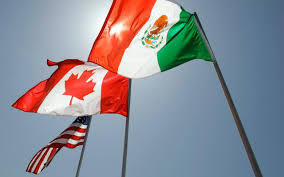 American Flag Mexican Flag Andrew Lilico
