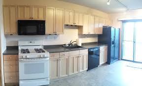 discount kitchen cabinets phoenix kitchen cabinet remodel tags diy kitchen cabinets plans kitchen