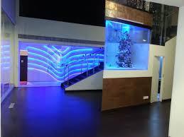 fish tank dreaded designer aquarium pictures concept simple small