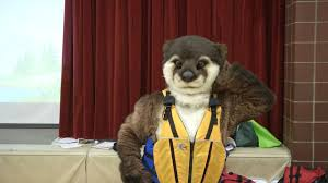 personal floatation fashion show with marta the river otter on vimeo