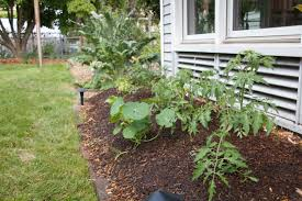 permaculture kathleen bean