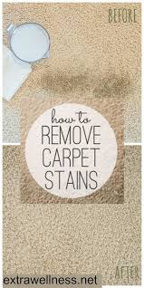 How Much To Dry Clean A Rug Best 25 Homemade Carpet Cleaners Ideas On Pinterest Homemade