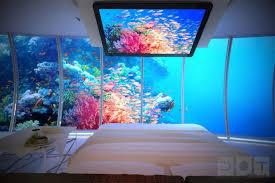 chambre aquarium chambre aquarium maison aquarium chambres et maisons