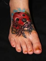 ladybug and designs