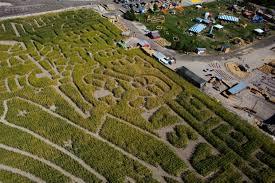 thanksgiving point corn maze celebrates nasa lehi news