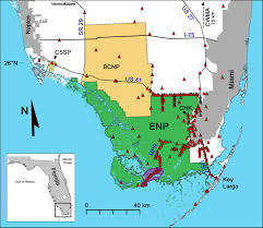 Map Of South Florida Severe Mammal Declines Coincide With Proliferation Of Invasive
