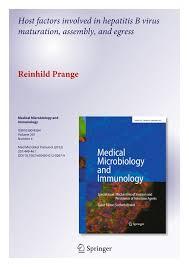 host factors involved in hepatitis b virus maturation assembly