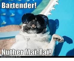Funny Bartender Memes - 25 best memes about bartender bartender memes