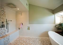 Bathroom Tub And Shower Designs by Bath Shower Combination Nexxus Remodeling