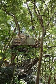 japan u0027s largest treehouse is also a high tech engineering feat