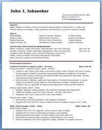 medicare auditor cover letter