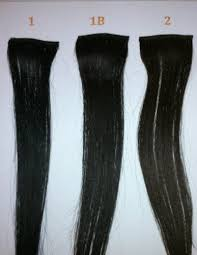 hair online india buy 100 indian hair clip in extension silky online best
