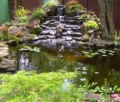 Backyard Garden Ponds 67 Cool Backyard Pond Design Ideas Digsdigs