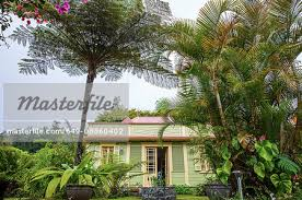 traditional green wooden house and palm trees reunion island