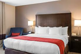 Comfort Inn And Suites Hotel Circle Comfort Inn U0026 Suites Zoo Seaworld Area Updated 2017 Prices