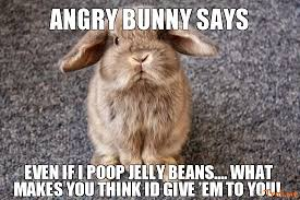 Jelly Meme - angry bunny says even if i poop jelly beans what makes you think